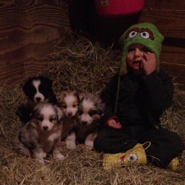 Daisey's Puppies Oct2011