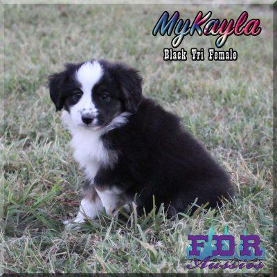 MyKayla 14