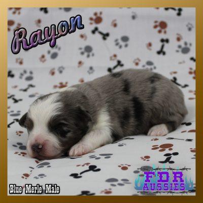 Rayon 4