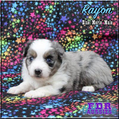 Rayon 6