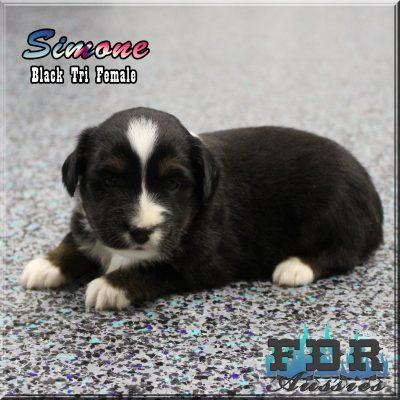 Simone 7